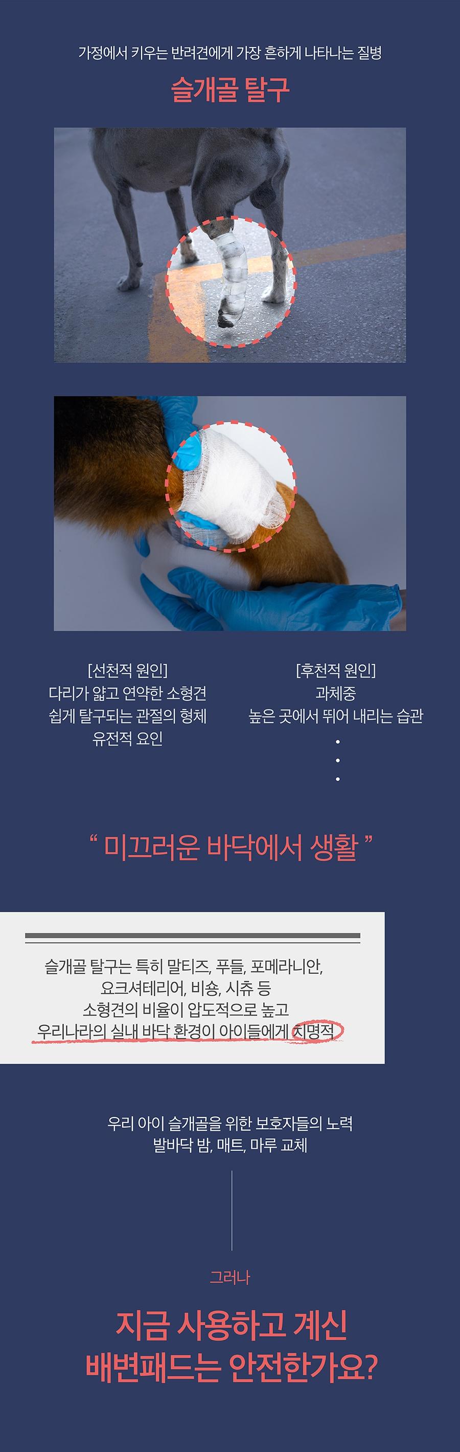 닥터설 논슬립 패드 특대용량 (50매*6개)-상품이미지-3
